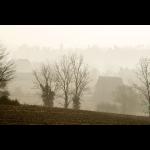 Dans la brume d'automne 04
