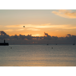 Le port à l'aube